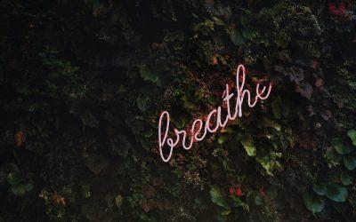 La respirazione Yoga: il Pranayama